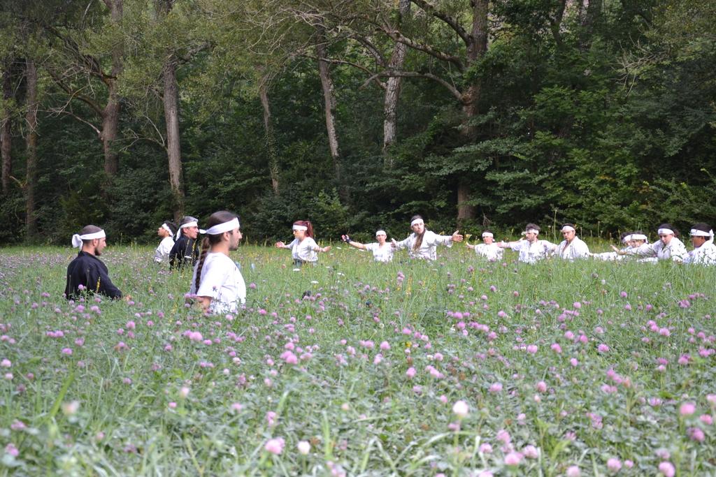 Scéance de Ki Taiso lors d'un entraînement en plein air.